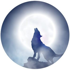 Wolf Dog Nutrition